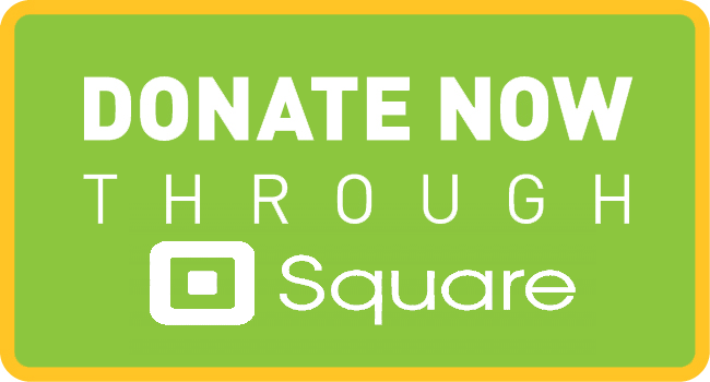 Square Donate Button